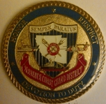 D11 Challenge Coin